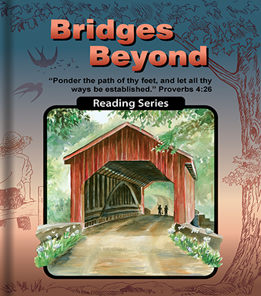 Bridges Beyond - Reader
