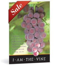 Church Bulletin - Grapes
