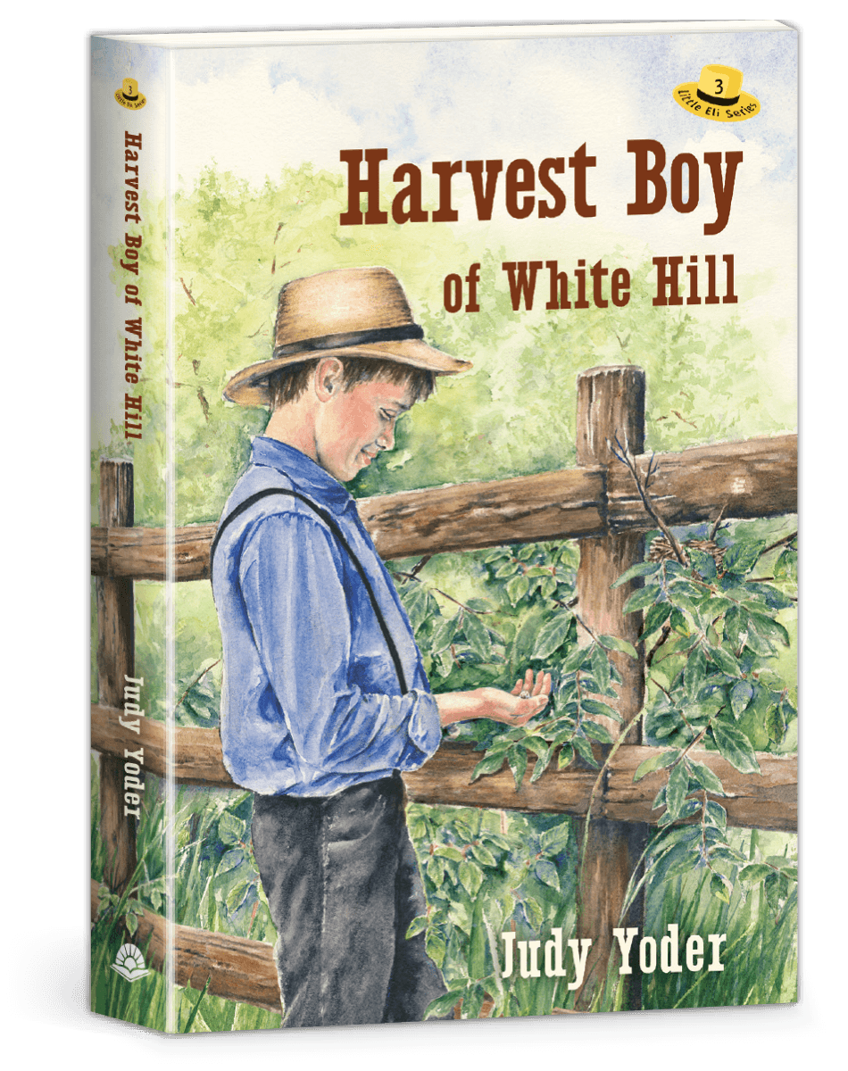 Harvest Boy of White Hill