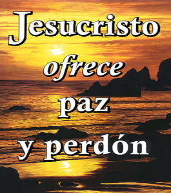 Jesucristo Ofrece Paz y Perdón - Paquete de 50