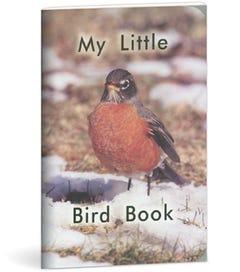 My Little Bird Book