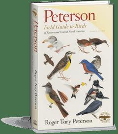 Peterson Eastern Birds Field Guide